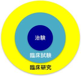 臨床研究の構造